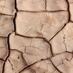 In Tansania, Kenia und Äthiopien ist kleinbäuerliche Landwirtschaft der größte Wirtschaftszweig. Umso ärger sind die Folgen der sich häufenden Dürreperioden.