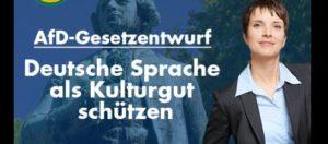 Die Forderung, die Deutsche Sprache zu schützen, klingt aus dem Munde von Petry wie eine Realsatire. Sie sollte entweder einen Deutschkurs besuchen oder ihre Texte vor Veröffentlichung von irgendeiner Person kurz redigieren lassen.